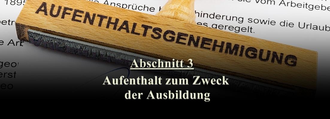 قانون الإقامة الألماني: الدراسة وتعلم اللغة